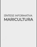 Capa-Sintese